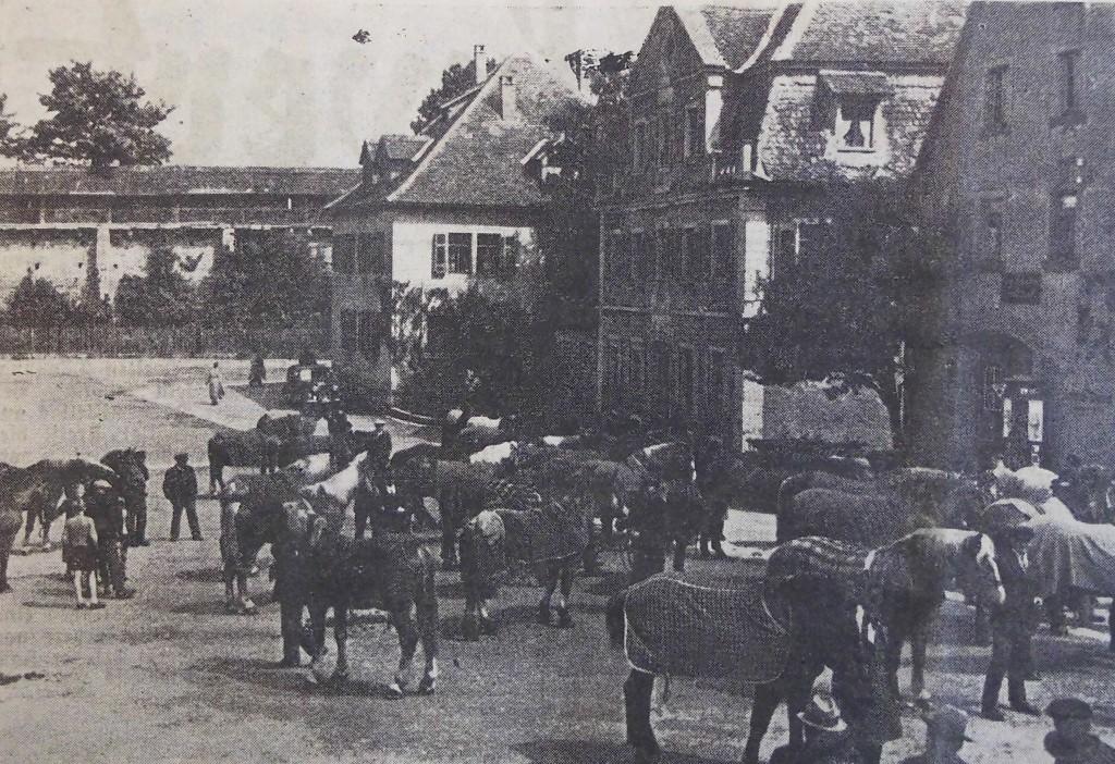 Pferdemusterung auf dem Judenkirchhof 1937 (Schrannenplatz)