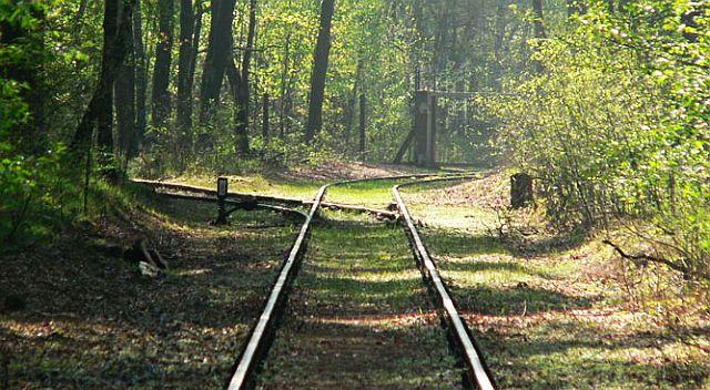 Reste der alten Gleisanlage der Muna Oberdachstetten; Foto: Muna-Museum Marktbergel