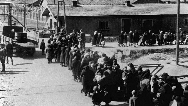 Neuankämmlinge in Auschwitz